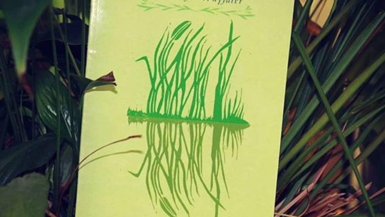 Rumi Weeds: London Launch
